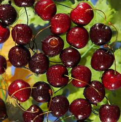 Linee di lavorazione per le ciliegie