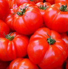 Linee di lavorazione per il pomodoro